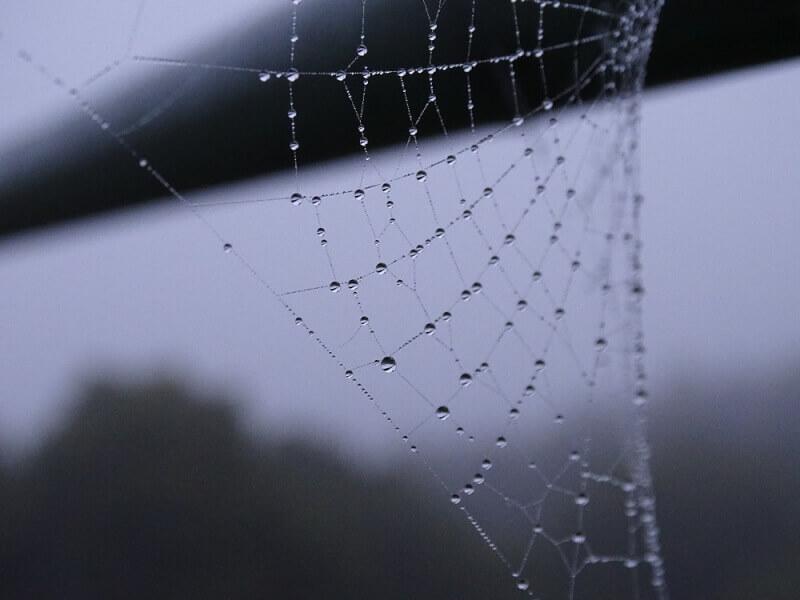 蜘蛛の糸  芥川龍之介